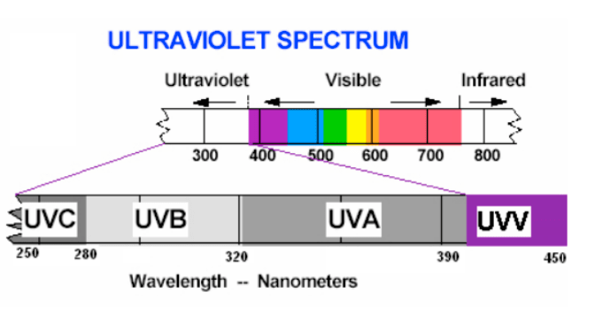 Ultraviolet Spectrum Wavelengths in Nanometers